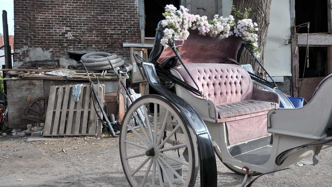 Extrait - Le Horse Palace - Nadine Gomez